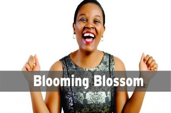 blossom1-653x365-1