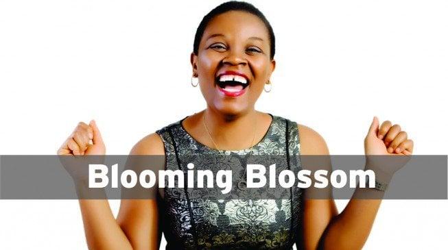 blossom1-653x365