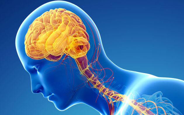 Parkinson's disease | TheCable.ng