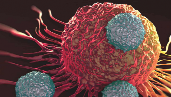 Gene-editing experiment begins on humans | TheCable Lifestyle