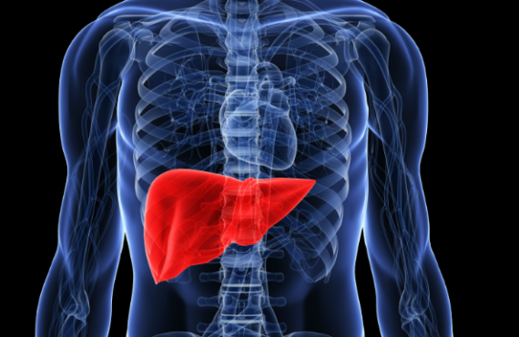 Research provides solution for early diagnosis of liver cancer