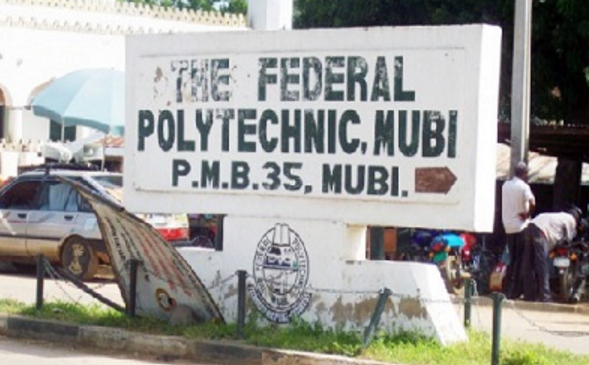 Mubi Polytechnic | TheCable.ng