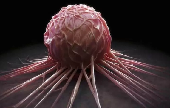 Scientists discover drug that halts growth of cancer | TheCable.ng
