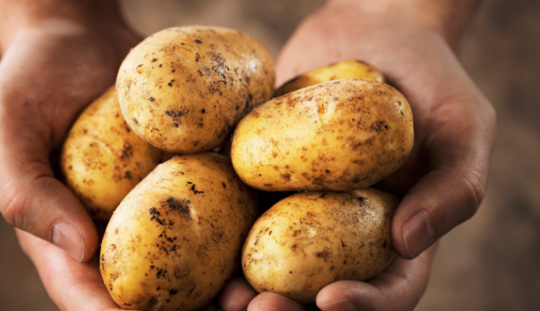 Health benefits of potatoes | TheCable.ng