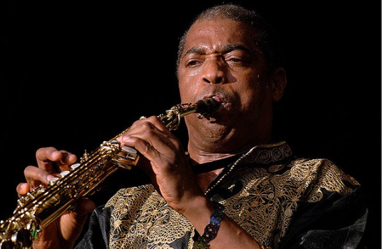 Femi Kuti holds musical note for 46 minutes | TheCable.ng