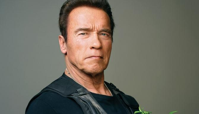 Arnold Schwarzenegger confirms return of Terminator | TheCable.ng