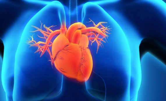 UCH: Death from cardiovascular diseases is on the rise