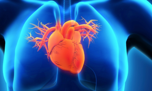 Can childhood poverty predict heart failure in adulthood? | TheCable.ng