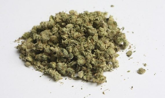 Study: Marijuana use increases risk of death from high blood…