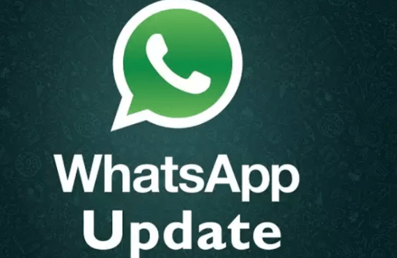 You can now send any type of file on WhatsApp   TheCable.ng