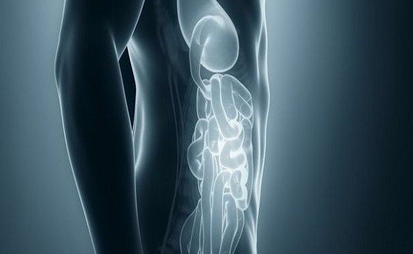 Scientists develop camera that can see inside human body | TheCable.ng