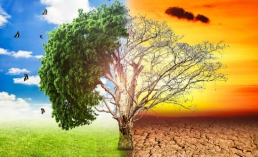 Climate change damages health | TheCable.ng