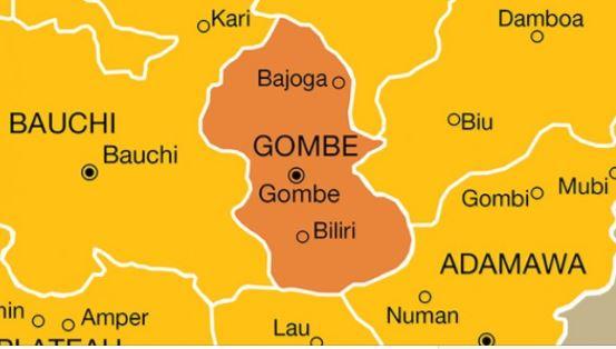 Gombe2