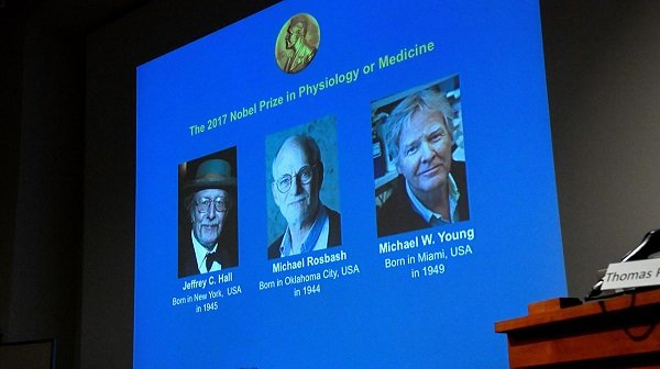 Three US-born scientists win 2017 Nobel Prize for medicine | TheCable.ng