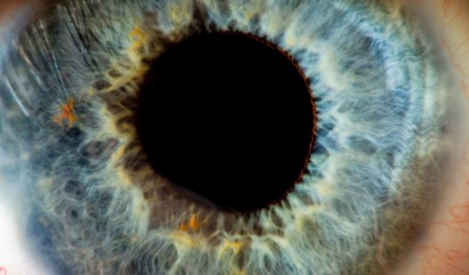 Gene therapy shows promise for curing inherited blindness | TheCable.ng