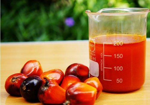 Eat Me: Six reasons red palm oil is good for your health   TheCable.ng
