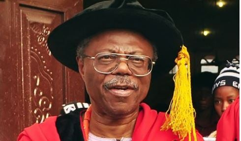 Photography, shoe-making should be made degree courses, says Falola | TheCable.ng