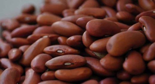 Eat Me: Five reasons you must include 'superfood' beans in…