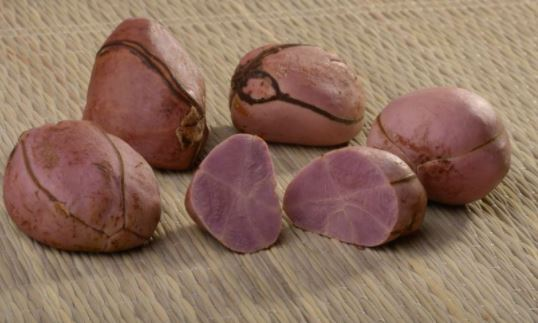 Eat Me: Five surprising health benefits of kola nut