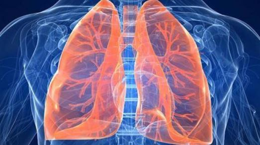 Study: Lung transplant recipients have higher risk of organ failure,…